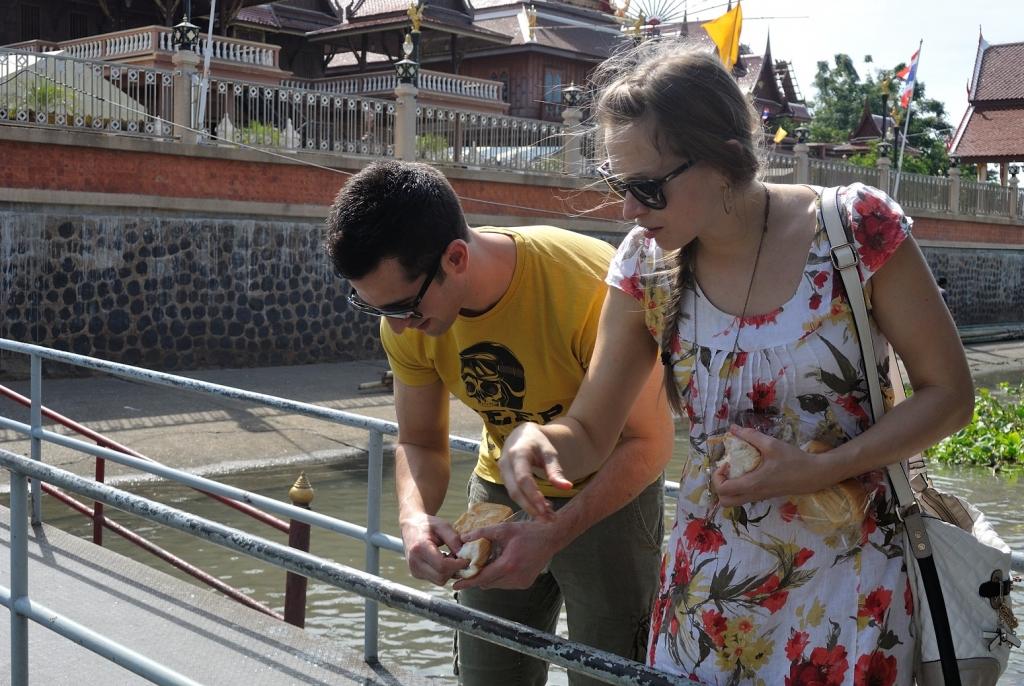 Thailand_fishfeeding