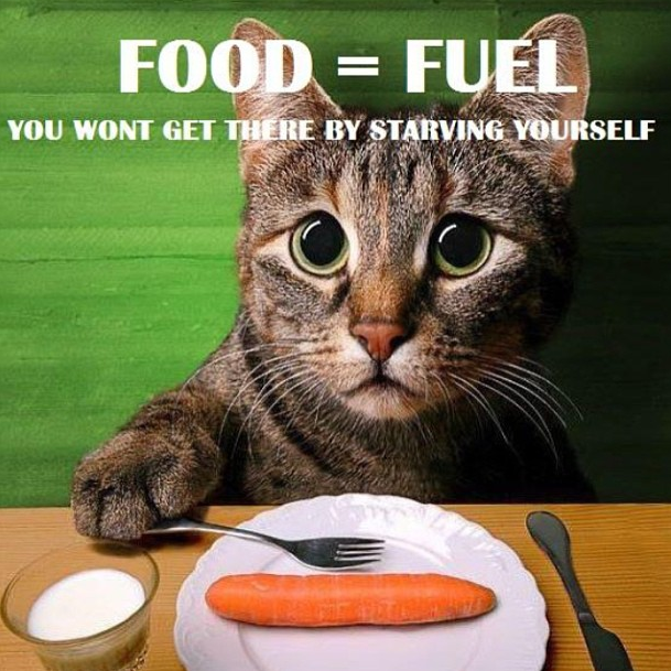 Food is fuel to your body