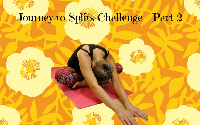 Journey to splits challenge – second photo check in