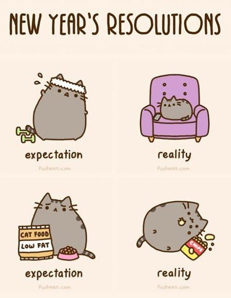 pusheens resolutions