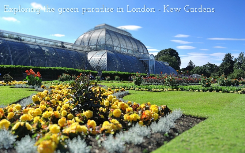 Exploring the green paradise in London – Kew Gardens
